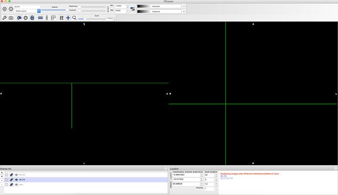 Screen Shot 2020-12-31 at 3.12.22 PM